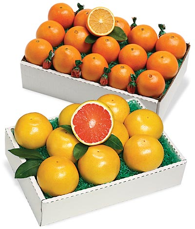 Navel Oranges and/or Indian River Grapefruit from Al's Family Farms
