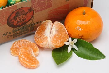 Al's Family Farms Honey Tangerines