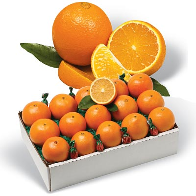 Navel Oranges from Al's Family Farms