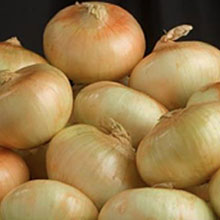 Al's Family Farms Genuine Vidalia Sweet Onions