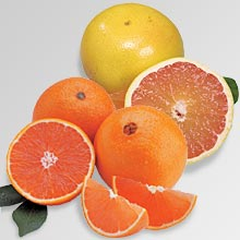 Christmas Red Navel Oranges
