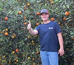 Matt checks the honeybells